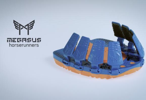 Megasus Horserunners